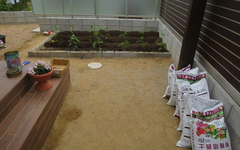家庭菜園の夢のはて